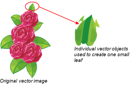 Vector Image in Illustrator