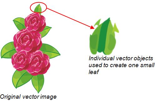 Vector Image in Illustrator